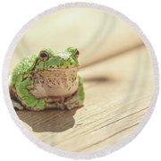 Posing Tree Frog Round Beach Towel