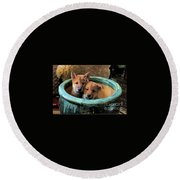 Potted Puppies Round Beach Towel