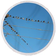 Power Line Birds Round Beach Towel