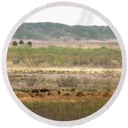 Prairie Bison Round Beach Towel