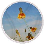 Prairie Cone Flowers Against Blue Sky Horizontal Number Three Round Beach Towel