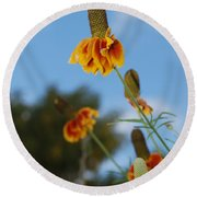 Prairie Cone Flowers Against Blue Sky Vertical Number One Round Beach Towel