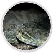 Prarie Rattle Snake Round Beach Towel