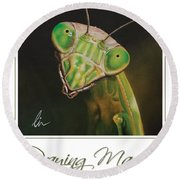 Praying Mantis Poster Round Beach Towel