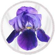 Prettiest Purple Iris Round Beach Towel