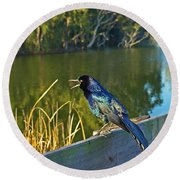 Pretty Bird At A Sunrise Round Beach Towel