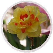 Pretty Daffodil Round Beach Towel