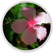 Pretty In Pink Photograph Round Beach Towel