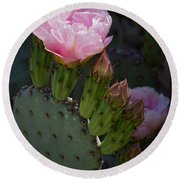 Pretty In Pink Prickly Pear  Round Beach Towel