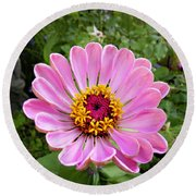 Pretty In Pink Zinnia Round Beach Towel