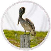 Pretty Pelican Round Beach Towel