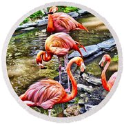 Pretty Pink Flamingos Round Beach Towel