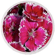 Pretty Pinks Round Beach Towel