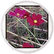Pretty Red And Yellow Flowers In The Twigs Round Beach Towel