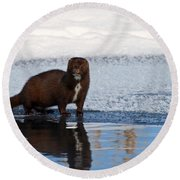 Pretty Reflecting Mink Round Beach Towel