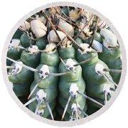 Prickly Cactus Round Beach Towel