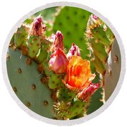 Prickly Pear Blooms Round Beach Towel