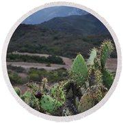Prickly Pear Cacti Rancho Sierra Vista Satwiwa Mountains Round Beach Towel