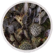 Prickly Pear Cactus At Tonto National Monument Round Beach Towel