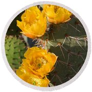 Prickly Pear Cactus Flowers Round Beach Towel