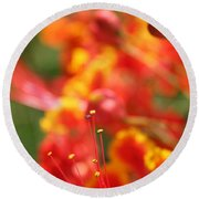 Pride Of Barbados Round Beach Towel