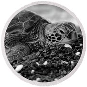 Profile Hawaiian Sea Turtle Bw Round Beach Towel