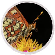 Profile Of A Butterfly Round Beach Towel