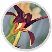 Profile Of A Day Lily Round Beach Towel