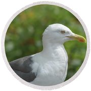 Profile Of Adult Seagull Round Beach Towel