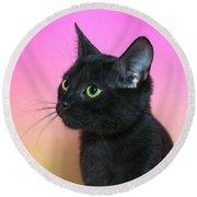 Profile Portrait Of A Black Kitten Round Beach Towel