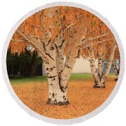 Prosser - Autumn Birch Trees Round Beach Towel