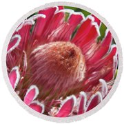Protea Bloom Round Beach Towel