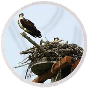 Protecting The Nest Round Beach Towel
