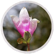 Proud Magnolia Round Beach Towel