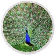 Proud Peacock Round Beach Towel