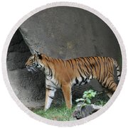 Prowling Tiger Round Beach Towel