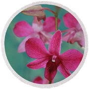Puanani Kealoha Dendrobium D Burana Red Flame Hawaiian Orchid Round Beach Towel