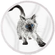 Pudsquiz Belina On The Prowl  Round Beach Towel