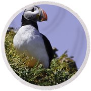 Puffin On The Rock Round Beach Towel