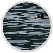 Puffin With Dinner Round Beach Towel
