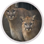 Puma Pair Round Beach Towel