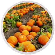 Pumpkin Patch Round Beach Towel