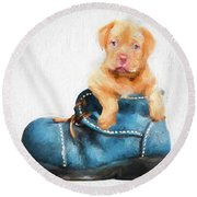 Pup In A Shoe Round Beach Towel