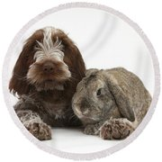 Puppy And Rabbt Round Beach Towel by Mark Taylor