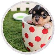 Puppy Cup Round Beach Towel