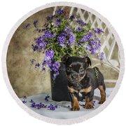 Puppy Dog With Flowers Round Beach Towel