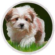 Puppy In High Grass Round Beach Towel