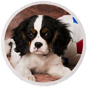 Puppy With Ball Round Beach Towel