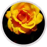 Pure Yellow Petals Round Beach Towel