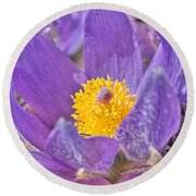 Purple And Gold - Bright Round Beach Towel